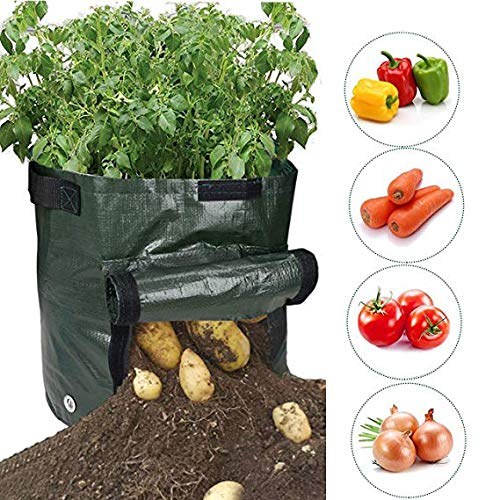 Mositto Potato Grow Bags, Durable 1Pack 7 Gallon Potato Planter with Access Flap, Raised Garden Bed for Planting Vegetables, Taro, Radish, Carrots, Onions