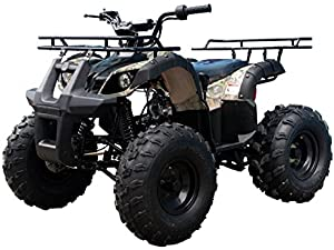 ATA125D Brand New 4 Wheeler fully automatic engine with REVERSE TAO TAO