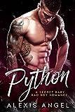 Bargain eBook - Python