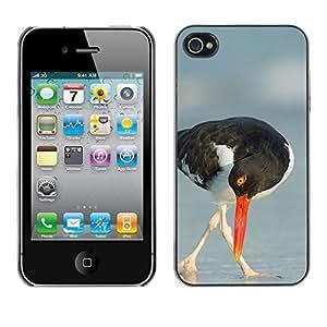 Design Hard ShellSea Summer Nature Bird For Apple Iphone 4/4S Case Cover