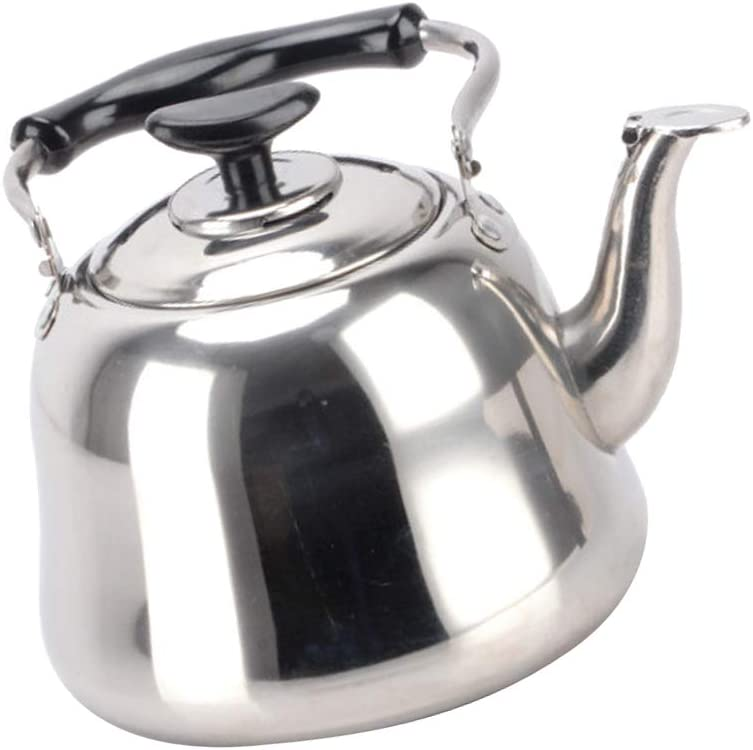 B Blesiya Fl/ötenkessel Induktion Teekanne Wasserkanne Wasserkessel aus Edelstahl 1L