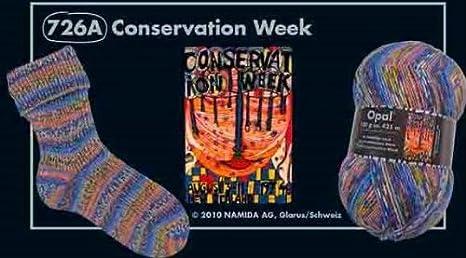 Opal Sockengarn Hundertwasser III 4 fach 726A Conservation Week