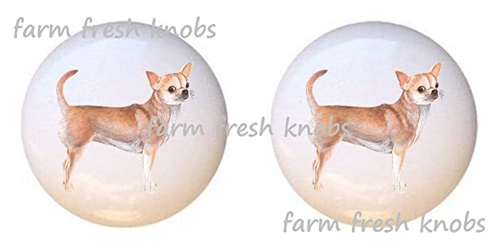 SET OF 2 KNOBS   Chihuahua Dog   Dogs   DECORATIVE Glossy CERAMIC Cupboard Cabinet  PULLS