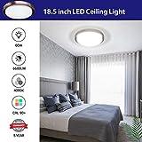 LED Flush Mount Ceiling Light, AntLux 18in Dimmable