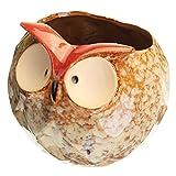 Garden Succulent Plant Flower Pot Mini Owl Shape Ceramic Planter Nursery Decorations 4 Inch - Garden Pots & Planters