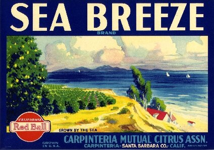 Carpinteria Ventura County California SEA Breeze Brand Lemon Citrus Fruit Crate Box Label Art - Crate Fruit Vintage