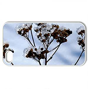 Plant stem - Case Cover for iPhone 4 and 4s (Winter Series, Watercolor style, White)