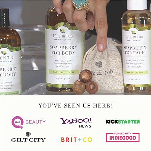 World S Gentlest Organic Shampoo 11oz Moisturizing Amp Ph
