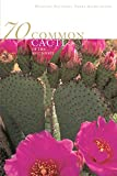 img - for 70 Common Cacti of the Southwest book / textbook / text book