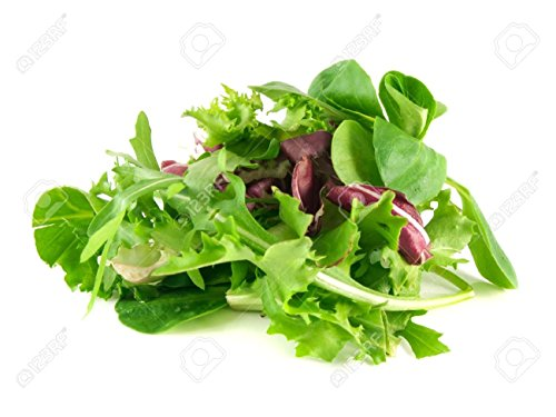 Organic Lettuce Seed Mix of 9 Greens - Mesclun Mix - Fall Crop and Cool Season Planting