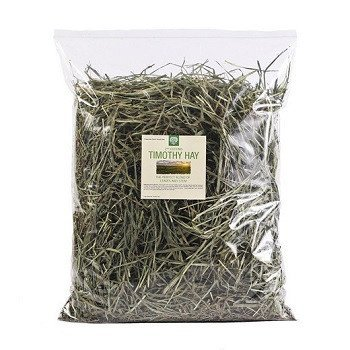 Amazon.com : Small Pet Select 12oz 2nd Cutting Timothy Hay : Pet ...