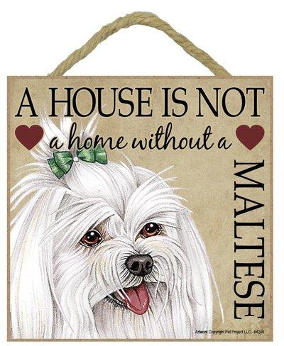 Maltese Cane regalo. Bella cartello in legno - ' House non è una casa  - Hang o stare sul podio. Car-Pets Ltd