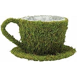 Lillian Rose Green Moss Teacup Flower Basket Wedding Decor