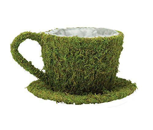 Lillian Rose Green Moss Teacup Flower Basket Wedding Decor - Teacup Basket