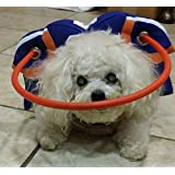 Muffin's Halo Guide For Blind Dogs - Quarterback Style (XS) (S)