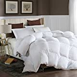 LESNNCIER Queen Down Alternative Comforter Duvet Insert All Seasons Ultra Plush Microfiber Fill Goose Down Alternative Comforter Machine Washable