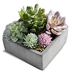 MyGift Assorted Artificial Succulent Plants in Grey Pot 54