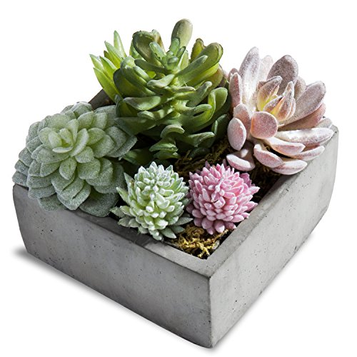 MyGift Assorted Artificial Succulent Plants in Grey Pot