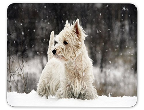 West Highland White Terrier Mouse pad-Non-Slip Rubber Mousepad-Applies to Games,Home, School,Office Mouse pad