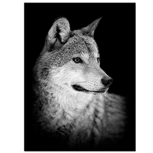 Frame Photo Wolf - LevvArts - Wolf Canvas Print,Portrait of Beautiful Wolf in The Dark Wall Art Stretched Wood Frame,Black and White Animal Canvas Pictures for Living Room Decoration,Ready to Hang