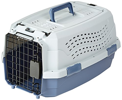 Crate Cat (AmazonBasics 19-Inch Two-Door Top-Load Pet Kennel)