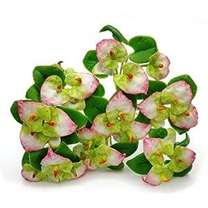 The Best Buy Set of 8 Dollhouse Miniature Fariy Garden Anthurium Plant Bouquet 90