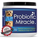 Probiotic Miracle Dog Probiotics for Dogs (360 servings)