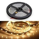 TOOGOO(R) OPOWAY Flexible Led Strip Light 300 LED 3528 SMD Warm White 3100K LED Ribbon 5 Meter or 16 Feet,12 Volt 24 Watt