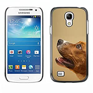 VORTEX ACCESSORY Hard Protective Case Skin Cover - smooth fox terrier mutt pet dog canine - Samsung Galaxy S4 Mini i9190 MINI VERSION!