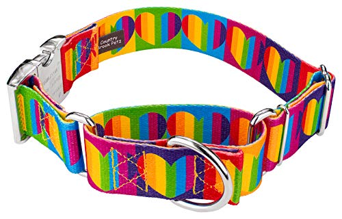 Country Brook Petz | 1 1/2 Inch Rainbow Hearts Martingale with Premium Buckle Dog Collar - Extra Large