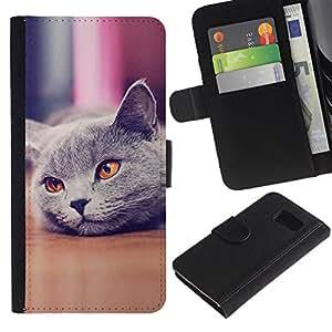 All Phone Most Case / Oferta Especial Cáscara Funda de cuero Monedero Cubierta de proteccion Caso / Wallet Case for Sony Xperia Z3 Compact // Cute Beautiful British Cat Shorthair