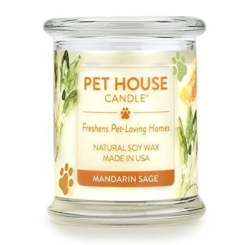 One Fur All 100% Natural Soy Wax Candle, 20 Fragrances - Pet Odor Eliminator, Appx 60 Hrs Burn Time, Non-toxic, Reusable Glass Jar Scented Candles – Pet House Candle, Mandarin Sage