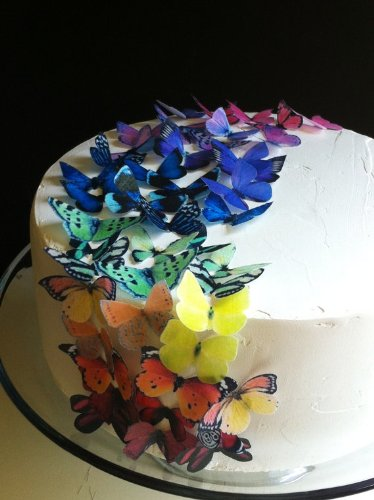 Edible Butterflies © - Small Assorted Raibow Collection Set of 50- Cake and Cupcake Toppers, -