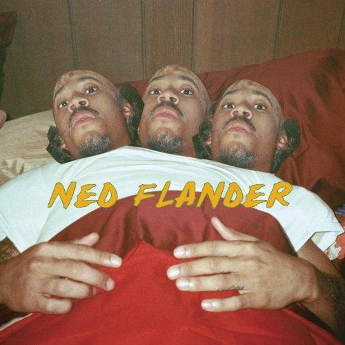 NY (Ned Flander) [Explicit] -