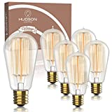 Vintage Incandescent Edison Light Bulbs: 60 Watt
