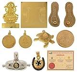 Fortune Adult Shoppee Shani Maha Raksha Kawach (17Cm X 20 Cm X 4 Cm, Golden+Black)