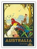 Australia - Australian National Travel - Australian Parrots - Vintage World Travel Poster c.1930s - Master Art Print - 9in x 12in