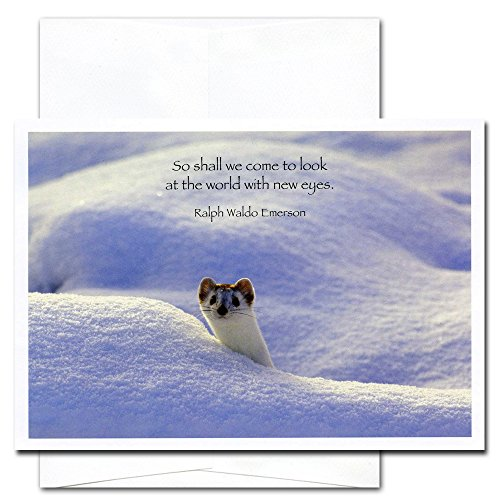 New Eyes: New Year Holiday Cards - box of 10 cards & envelopes