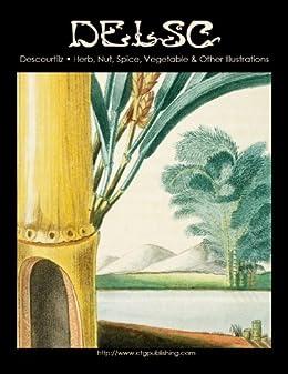 Descourtilz - Herb, Nut, Spice, Vegetable & Other Illustrations by [Paquette Widmann, Melanie]
