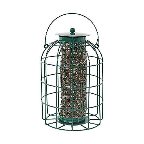 Sunnydaze 9 Inch Green Wire Squirrel-Proof Wild Bird Feeder