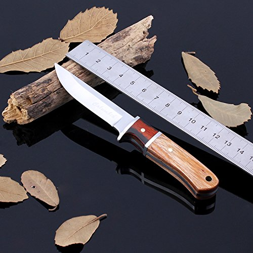 Bravo Knife Rescue (Brave Fighter Fruit Knife Wood Handle with Nylon Sheath Outdoor Camping Survival Rescue Portable Tool)