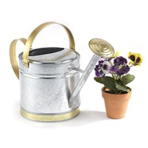 Unique coated tin 1 qt watering can patio - Unusual watering cans ...