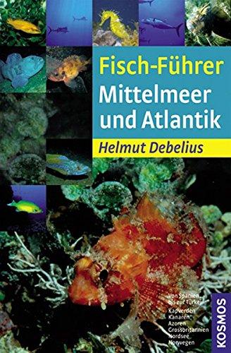 Fisch-Führer Mittelmeer und Atlantik