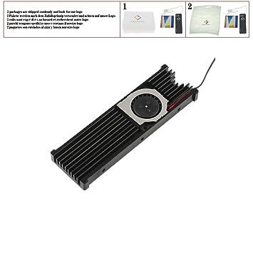 huicouldtool M.2 NVMe SSD Dual Disipador de Calor Radiador ...