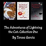 The Adventures of Lightning the Cat: The Adventures of Lighting the Cat, Book 1 | Teresa Garcia