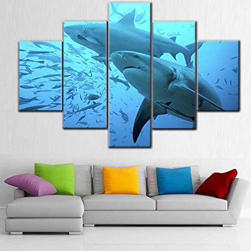 5 Piece Canvas Wall Art Bull Shark with Many Small Fish Pictures Underwater World Paintings Contemporary Sea Artwork Modern Home Decor Wooden Framed Ready to Hang Posters and Prints(60''Wx40''H)