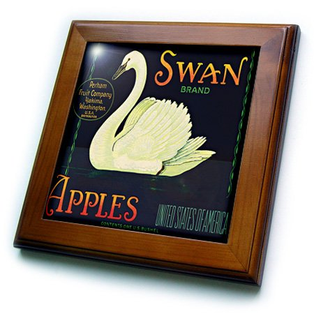 3dRose ft_171124_1 Swan Brand Apples Washington USA with White Swan Swimmingin The Water Framed Tile, 8 by 8-Inch -