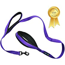 """Soft and Thick Double Handle Premium Nylon 4FT x 3/4Inch Leash - Dual Soft Padded Handles for Ultimate Control - For Small to Large Dogs - """"Classic Comfort"""" in 4 Vibrant Colors (Vibrant Purple)"""
