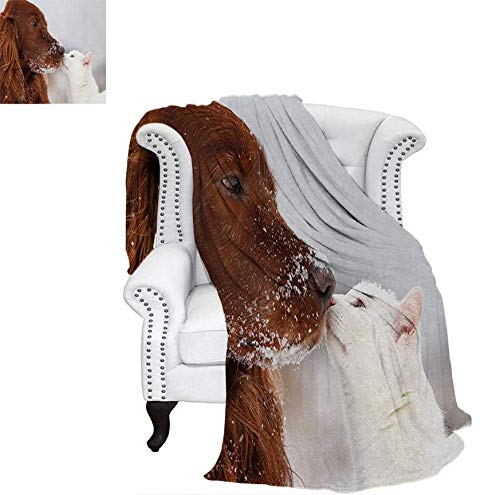"Oversized Travel Throw Cover Blanket Irish Setter and Cute White Cat in Snow Kissing Friendship Love Romance Super Soft Lightweight Blanket 70""x60"" Dark Orange White Beige"
