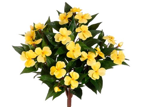 "13.7"" New Guinea Impatiens Bush Yellow (Pack of 6)"